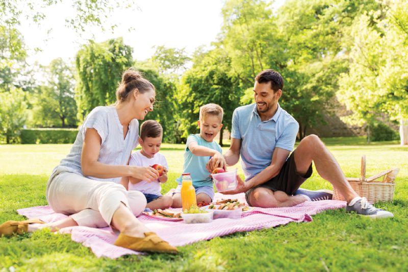 Family picnic eco-friendly